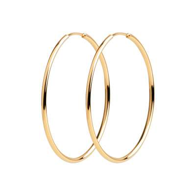 Hoop Earrings Gold plated...