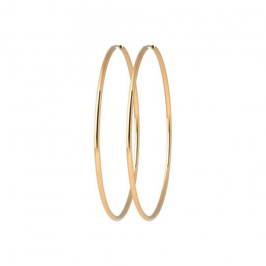Hoop Earrings Gold plated...